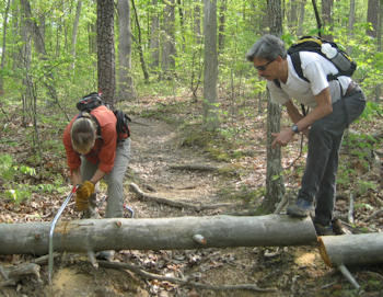 Trail Work in Duncan Hollow