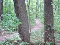 Bull Run Trail
